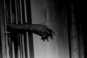 America's Prison Industrial Complex