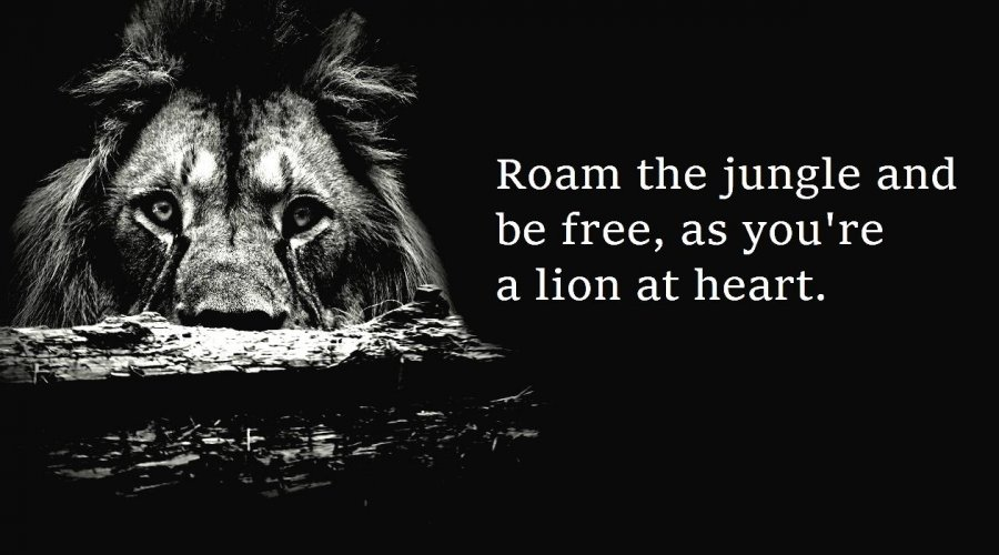 You're A Lion At Heart