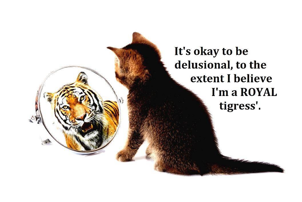 I Am A Tiger Period