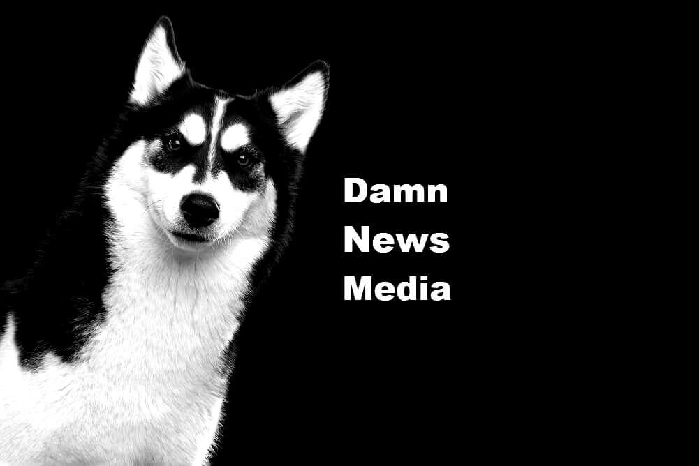 Private Citizen's Appeal To Investigate Mainstream News Media