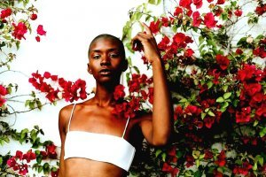 Fashion: Leaves And Roses