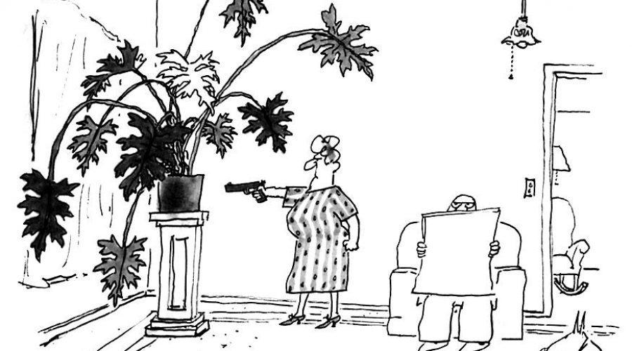 Plant Humor: Journalists Who Kill Plants