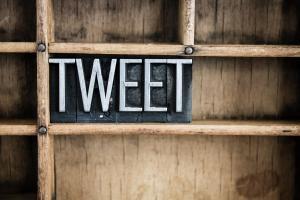 Stupid Brainless Tweets Inspired An Ingenious Phrase