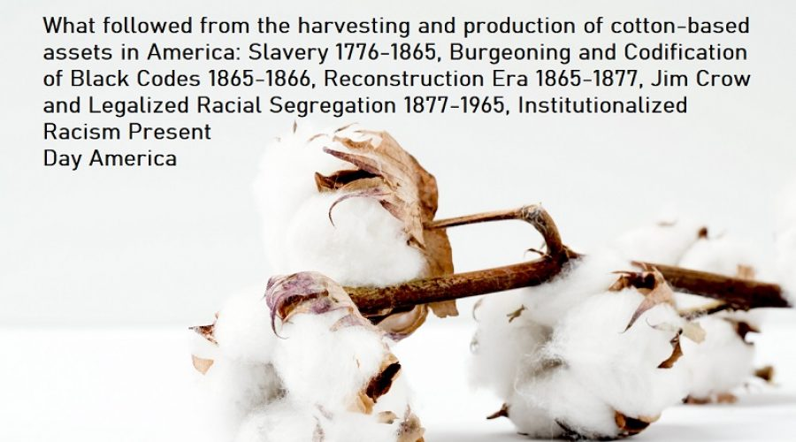 The Beautiful Cotton Plant Has An Ugly History